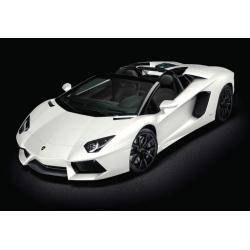 Lamborghini Aventador LP 700-4 Roadster - Bianco Canopus