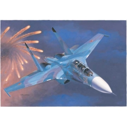 Russian Su-27UB Flanker C