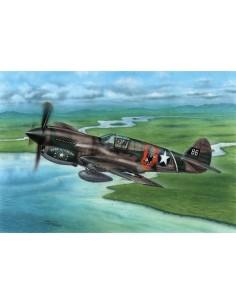 "P-40E Warhawk ""Claws and Teeth"""