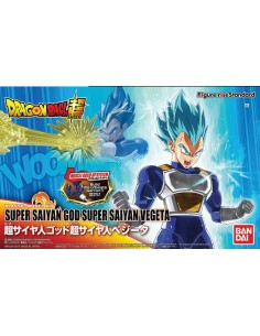 Dragon Ball Z Super Saiyan God Super Saiyan Vegeta