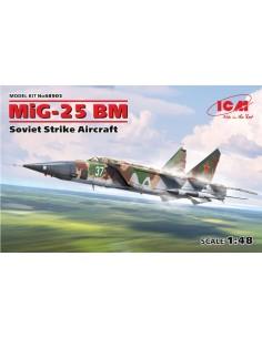 MiG-25RBT Foxbat B Soviet Reconnaissance Plane