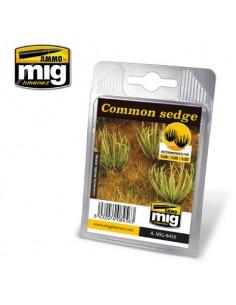 MIG - A.MIG-8456 - Common Sedge  - Hobby Sector