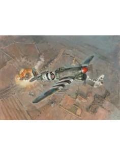 Typhoon Mk. IB late
