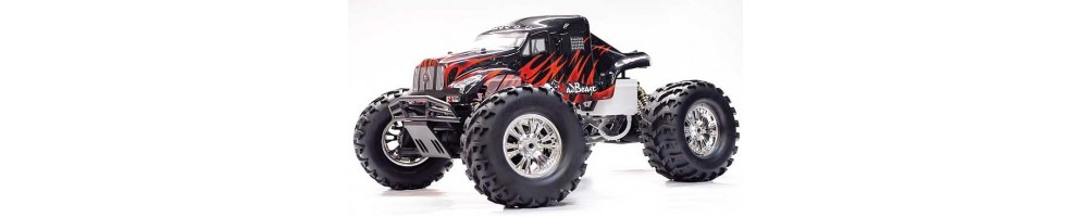 Nitro Monster Trucks radio control models