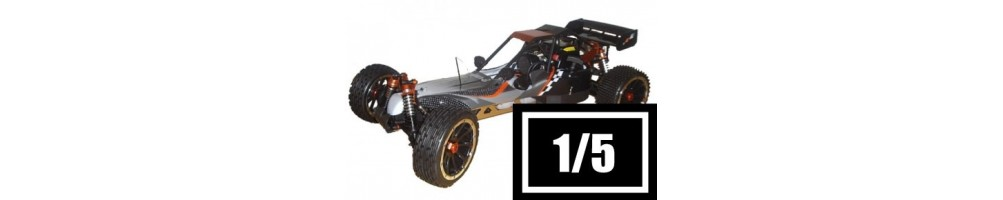 1/5 Scale RC Cars