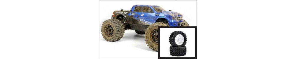 Monster Truck / Truggy