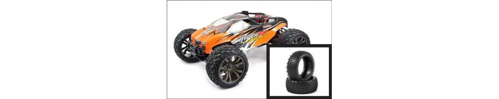 Monster Truck/Truggy