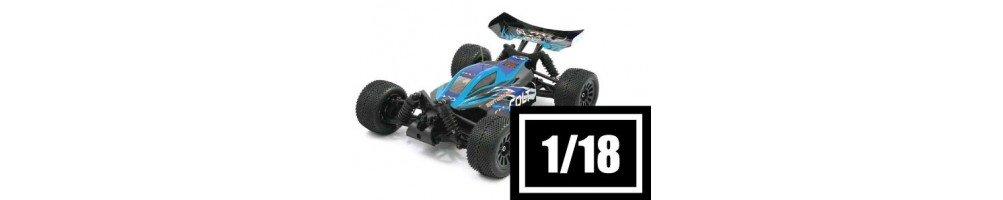 Electric RC Cars 1/18 Scale Off-Road