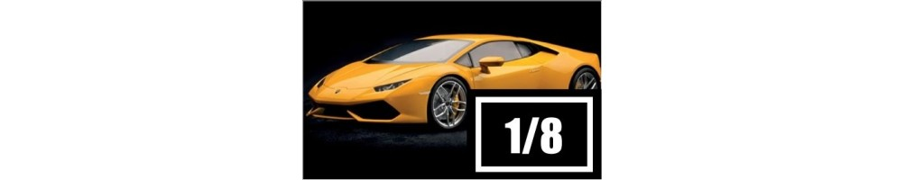 1/8 scale car model kits.