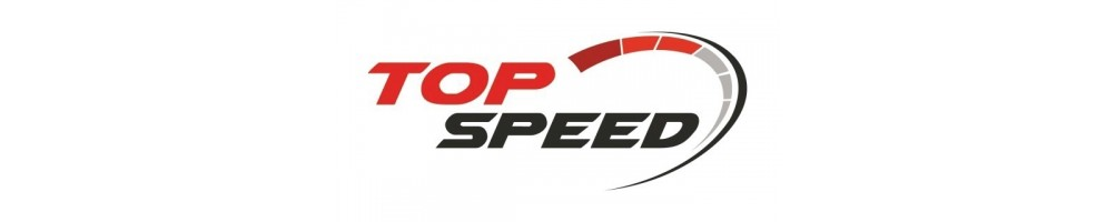 TopSpeed diecast models 1/18 scale