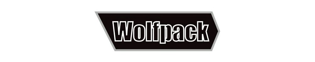 Wolfpack 1/48 airplanes plastic model kits