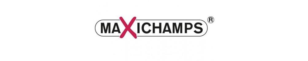 Maxichamps diecast models